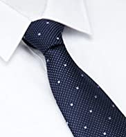 Ultimate Performance Pure Silk Textured Spotted Tie