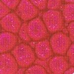 PEBEO FANTASY PRISME rouge anglais n°13 en 45ml