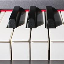 Alesis Cadenza 88-key hammer action hammer-action digital piano keyboard digital keyboard MIDI keyboard