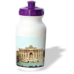 Vacation Spots - Trevi Fountain Italy - Water Bottles
