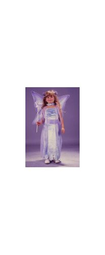 Water Color Fairy Costume - Toddler Costume