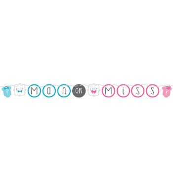 Bow or Bowtie? Ribbon Banner Little Man or Miss Gender Reveal Shower - 1