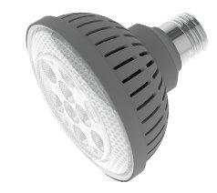 Par30 Led Replacement Lamp
