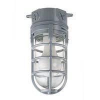 Metal Cage Ceiling Mount Light