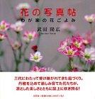 花の写真帖―わが家の花ごよみ