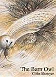 Barn Owl Hb
