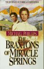 The Braxtons Of Miracle Springs #1