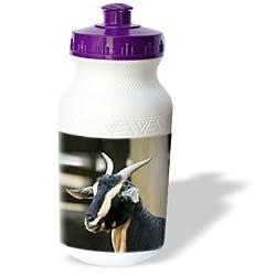 Farm Animals - Goat - Water Bottles