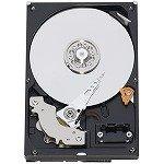 WESTERN DIGITAL 3.5インチ内蔵HDD 1TB IntelliSeek 16MB SATA 3.5inch(GP333) WD10EACS-D6B0