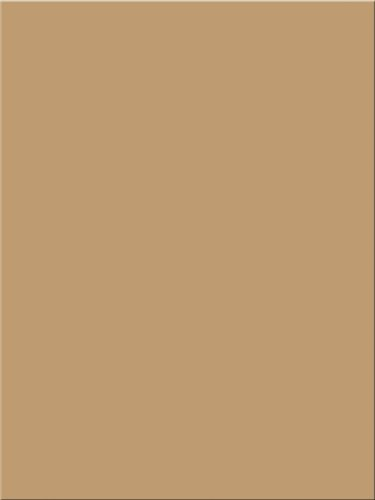 Pacon Tru-Ray Construction Paper, 18-Inches by 24-Inches, 50-Count, Tan (103087)
