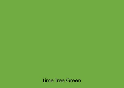 "12"" X 10 Ft Roll Of Matte Oracal 631 Lime Tree Green Repositionable Adhesive-Backed Vinyl For Craft Cutters, Punches And Vinyl Sign Cutters By Vinylxsticker front-795837"