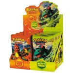 Pokemon-EX-Fire-Red--Leaf-Green-Trading-Card-Game-Booster-Pack