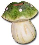 4-umidificatori-di-piante-funghi-