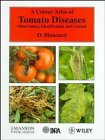 img - for A Colour Atlas of Tomato Diseases: Observation, Identification and Control book / textbook / text book