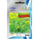 flowering-bok-choy-pak-choi-chinese-cabbage-seeds-4350-seeds-white-stem-1-package-from-chai-tai-thai