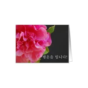 Amazon.com: korean birthday camellia Card: Health & Per