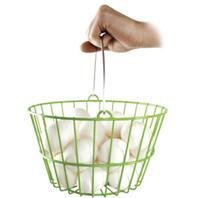 Chicken WARE Egg Basket (Small Chicken Egg Incubator compare prices)