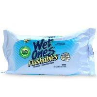 Playtex Wet Ones Flushables, Personal Cleansing Wipes, With Aloe, Vitamin E & Witch Hazel, Refill - 48 Ea/ Pack, 4 Pack front-1046431