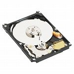 WESTERN DIGITAL 2.5インチ内蔵HDD 250GB U-ATA100 5400rpm 8MB WD2500BEVE