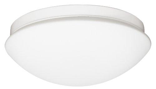 Ranex Cork 60 Watt Indoor Outdoor Ceiling Wall Light