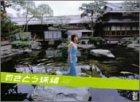 月刊さとう珠緒 [DVD]
