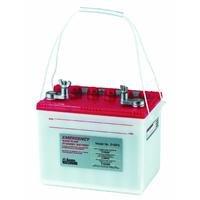 Glentronics 24ep6 The Basement Watchdog Emergency Sump Pump Standby Battery