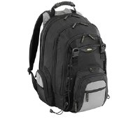 Targus CityGear Backpack Case for 17 Inch Notebooks TCG216  (Black with Grey)