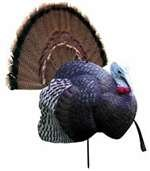 Great Features Of Primos B-Mobile Decoy