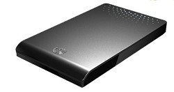 Seagate FreeAgent Go 320 GB USB 2.0 Portable External Hard Drive ST903203FAA2E1-RK (Black)