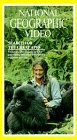 National Geographic: Search for Great Apes [VHS]