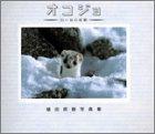 オコジョ 白い谷の妖精―増田戻樹写真集