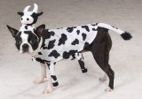 Pet Costume Udderly Adorable Large
