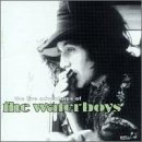 The Waterboys - The Live Adventures of the Waterboys (2cds) - Zortam Music
