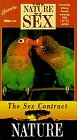 Sex Contract [VHS]