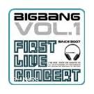 Big Bang 2007 1st Concert Live Album - The Real(�؍���)