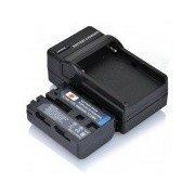 DSTE NP-FM50 / FM55H Battery + Charger for Sony F717 F828 S85 300K 3028 418E 96K D1000 Camera Black
