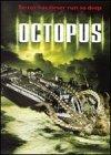 Octopus [Import]