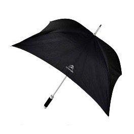 citroen-square-black-walking-stick-rain-umbrella