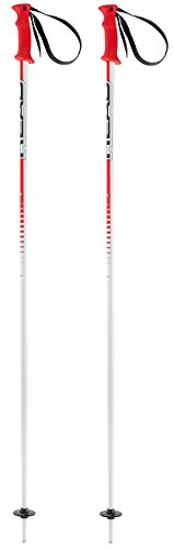 HEAD Erwachsene Skistöcke Multi