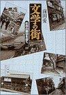Bungaku no machi: Meisaku no butai o aruku (Sh ogakkan raiburari) (Japanese Edition)