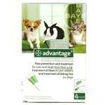 Advantage 40 mg Spot-On Solution for Small Cats, Small Dogs and Rabbits (up tp 4kg)