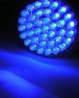 Acne 415 Blue Light Therapy 38 LED Bulb ONLY! 415nm