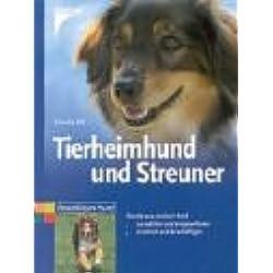 Tierheimhund und Streuner: Hunde aus zweiter Hand auswählen und eingewöhnen, erziehen und beschäftigen