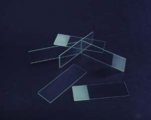 Frosted 1X3 Pk/72 Microscope Slide