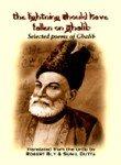 Lightning Should Have Fallen on Ghalib: Selected Poems of Ghalib