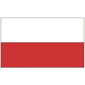 Amazon.com : 3x5 Poland Flag Polish Banner Country Polska