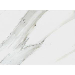 Pietra Calacatta 12 in. x 24 in. Ivory Porcelain Floor and Wall Tile