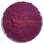 Purple Corn Extract Powder, 100 grams