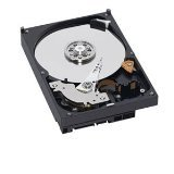 "Western Digital, Caviar Blue 500GB 3.5"" Internal Hard drive, SATA 6Gb/s (SATA 3) 16MB Cache from WEST DIG"