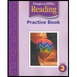 Houghton Mifflin Reading: Practice Book Lv 3 Volume 2 (0618384758) by HOUGHTON MIFFLIN